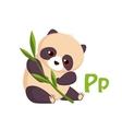 Panda Funny Alphabet Animal vector image vector image