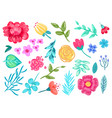 pencil drawn flowers on white background pattern vector image