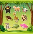 set of wild animals sticker vector image
