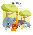 Wild animal background 2 vector image vector image