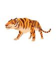 adult big tiger cute animal from wildlife big vector image