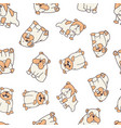 bulldog pattern vector image