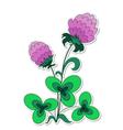 Clover flower vector image vector image
