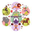 flat circus round concept vector image