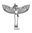 isis ancient egyptian mother goddess sketch vector image