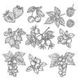 landscape design and gardening service banner vector image vector image