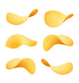 set of yellow crispy potato chips isolated on vector image