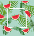 square frame with watermelon and branches leaves vector image vector image