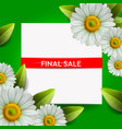 summer final sale lettering and realistic daisy vector image