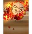 Autumn Sale background with copyspace plus EPS10 vector image vector image