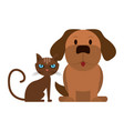 dog and cat animals vector image