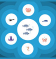 flat icon marine set of cachalot fish algae and vector image vector image
