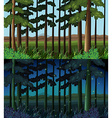 Forest scene at day time and night time vector image