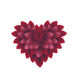 Red Dahlia Flowers in A Heart Shape vector image vector image