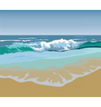 Summer Beach Waves vector image