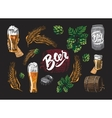 Colored Beer Elements Set vector image vector image