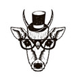 hipster deer muzzle wearing top hat and glasses vector image vector image