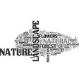 nature word cloud concept vector image vector image