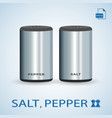 set of salt pepper shakers isolated on a vector image vector image