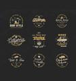 vintage surfing graphics and emblems set for web