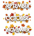 Autumn banners with maple leaves vector image vector image