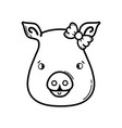 line cute pig female wild animal vector image vector image