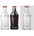 glass bottles with and without drink vector image