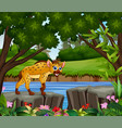 a hyena looking for prey at daytime vector image vector image
