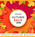 autumn sale background template vector image vector image