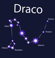 constellation draco with stars in the night vector image vector image
