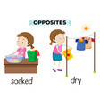 english opposite word soaked and dry vector image vector image