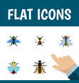 flat icon fly set of fly mosquito bluebottle and vector image