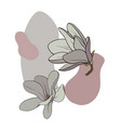 magnoli flowers vector image vector image