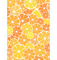 pattern background sliced halves of citrus vector image