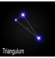 Triangulum Constellation with Beautiful Bright vector image vector image