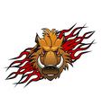 wild boar tattoo vector image vector image