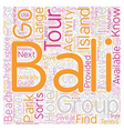 Bali What To Do And Where To Go text background vector image vector image