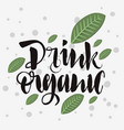 drink organic rough traced custom artistic vector image vector image
