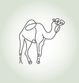 Dromedary camel in minimal line style vector image