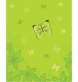 Floral card with butterflies vector image vector image