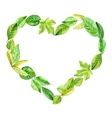 frame heart made of various leaves in watercolor vector image vector image