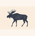 moose wild deer concept design of farm animals vector image