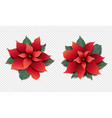 poinsettia set isolated transparent background vector image vector image