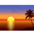 Sunset with palmtree silhouette vector | Price: 1 Credit (USD $1)