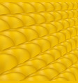yellow ripe corn pattern vector image