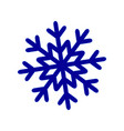 a snowflake of winter snow icon christmas vector image vector image