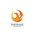 best phoenix logo vector image vector image