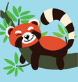 cute lemur on branch child graphic vector image vector image