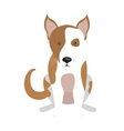 Dog and pets cartoon graphic design vector image vector image