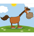 Horse Character On A Meadow vector image